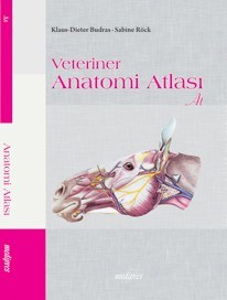 Veteriner Anatomi Atlası (At)