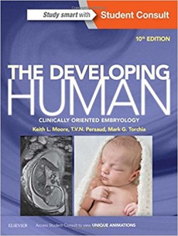 The Developing Human, 10e